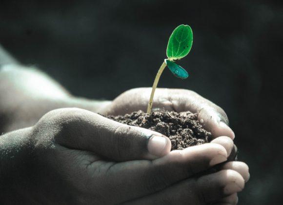 Insieme coltiviamo il futuro