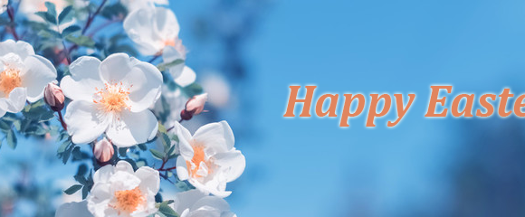 Happy Easter! Best Wishes!